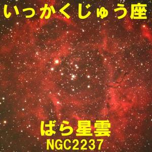 NGC2237(ばら星雲)