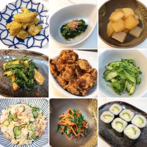 ヘルパー向け日本の家庭料理レッスン