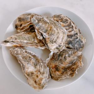 牡蠣にハマる