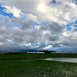黒い雲と青い空   山あるき断念
