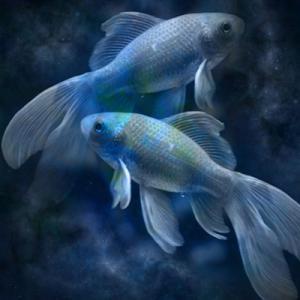 【224 魚座新月】「無条件に愛し愛される」を許可する神聖な愛のステージ