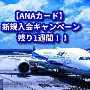 ANAカード入会キャンペンは残り1週間!TOKYUルートを開通されるなら今です♪