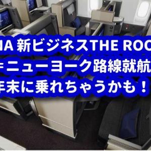 【ANA】新プロダクト機777-300ERをNY路線に投入で乗れることになりました♪