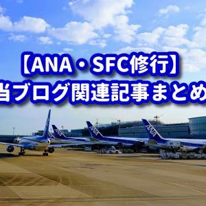 【ANA】2020年 SFC修行・関連記事のまとめ