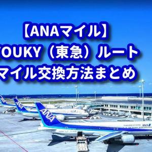 【TOKYU(東急)ルート】おすすめポイントサイトからANAマイル交換方法まとめ