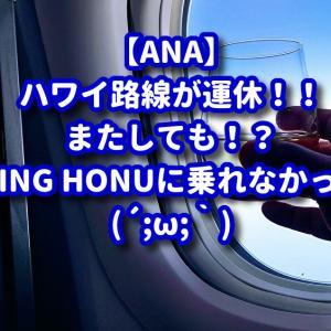 【ANA】FLYING HONU(フライングホヌ)は何時乗れるの?2度目のキャンセル!?いや?日程変更か?