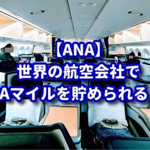 【ANA】フライトマイルってANA以外の航空会社でも貯められるって知ってますか?