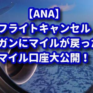 【ANA】飛べないのでガンガンにマイルやSKYコインが戻って来ました!