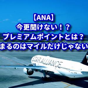 【ANA】今更聞けないANAプレミアムポイントとは?