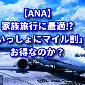 【ANA】家族旅行に最適!?いっしょにマイル割はお得なのか?【国内線】