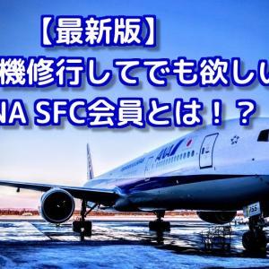 【最新2020年版】飛行機修行してでも欲しいSFC会員資格とは?【ANA】