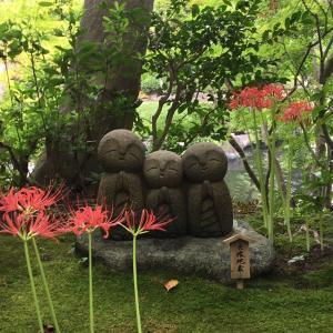 鎌倉お墓参りと長谷寺の和み地蔵