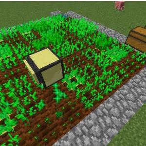 コンピュータークラフト こだわりの自動農業