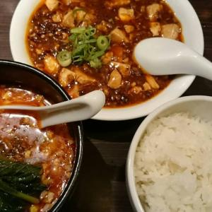 【愛知県】想吃担々麺の担々麺と麻婆豆腐