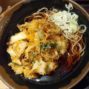 【東京都】そば田のかき揚げそばとミニかつ丼