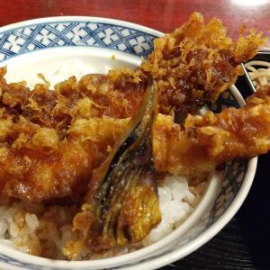 【東京都】金城庵の天丼とざる蕎麦