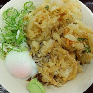 【東京都】かめやの天玉そば(冷)麺大盛