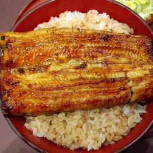 【新橋】鰻かねてつの大うな丼ご飯大盛