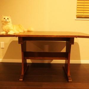 ミニマリストの家具選び。札幌のおすすめ古家具・古道具屋リスト
