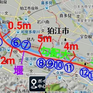 台風通過後の多摩川パトロールランと、越水への余裕度の実態