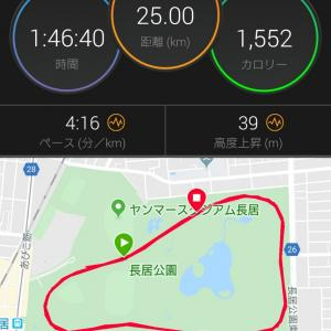 日曜日の全力25km走からの大阪マラソンの予想タイムは??