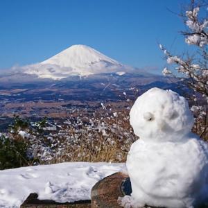 雪景色の足柄峠走 ~勝田1週間前の刺激入れ~