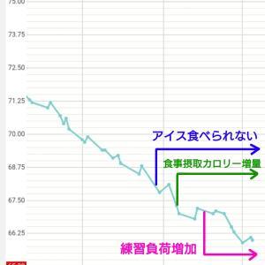 ダイエットの進捗報告(9月末)