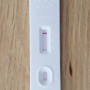 新型コロナウイルスの抗体検査を実施してみた