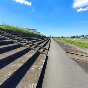 1ヶ月ぶりの多摩川でミドルジョグとロケットマラソン東京大会のコースチェック