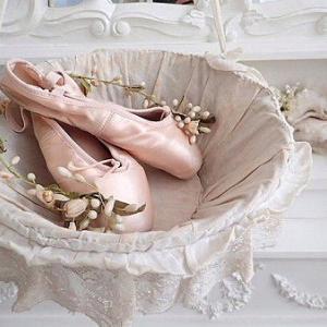 ★☆ 薔薇刺繍 ホワイトワークレースのパニエ ★☆