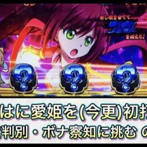 【設定狙い】いろはに愛姫を初打ち! 目押し下手なしぃさんが設定判別・ボナ察知に挑む!