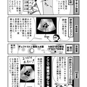 プロゲステロン錠剤による排卵抑制方法⑤