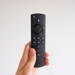 ひきこもりに大活躍!Amazon「Fire TV Stick」で子どもと映画タイム