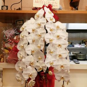 祝6周年 お祝い花