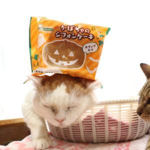 かぼちゃのシフォンケーキ