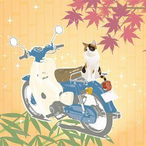 猫を乗せて走るスーパーカブ