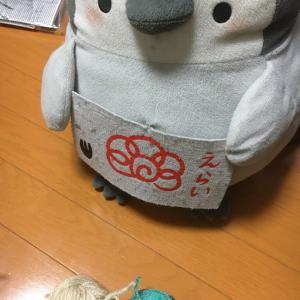 『長男氏卒業制作なう&余った毛糸で何編もう?手話→愛媛県』