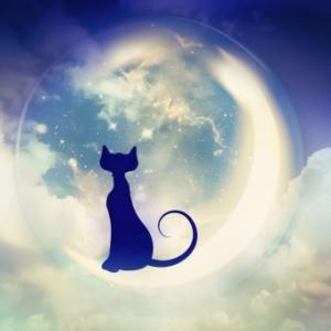【無料】10/28は蠍座の新月です♡遠隔女神ヒーリングのご案内