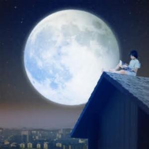 【無料】牡牛座満月♡無料遠隔レイキヒーリングのご案内☆