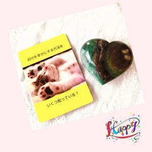 今日一日意識したいこと☆TOIKAKE CARDからの質問メッセージ♡