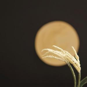 9月21日は魚座満月&中秋の名月☆甘いお団子でスウィートな一日を♡
