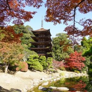 紅葉の香山公園