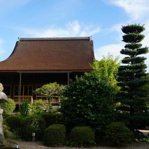 龍福寺池泉庭園の朝