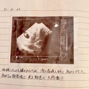 30年前に書いておいた「出産までの記録」その1