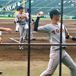 いつもと違うプロ野球観戦 in 甲子園