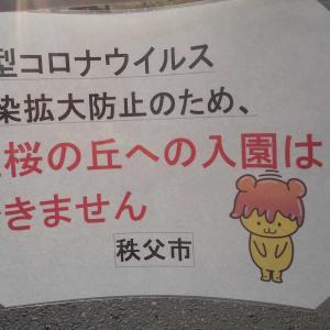 秩父芝桜まつり開催決定→一部縮小→広告掲載→パッシング→開催急止!!