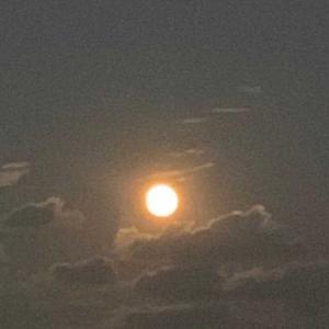 秩父武甲山 お月見と夜中散歩