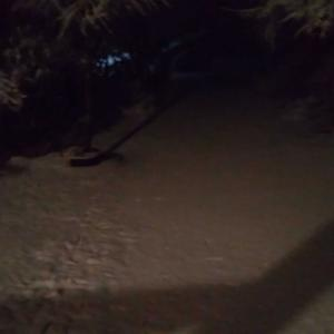 おひとり様移住生活で真夜中の雪かき