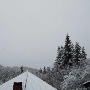 おひとり様移住生活、真夜中の雪かきした朝