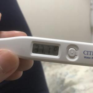 カゼひいて熱でてるけど、ポリテク入校1日目無事終了(ー ー;)